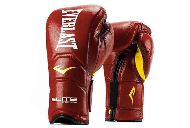 Elite Hook & Loop Everlast boxing gloves