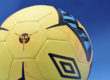 Neo Pro Soccer Ball by Umbro